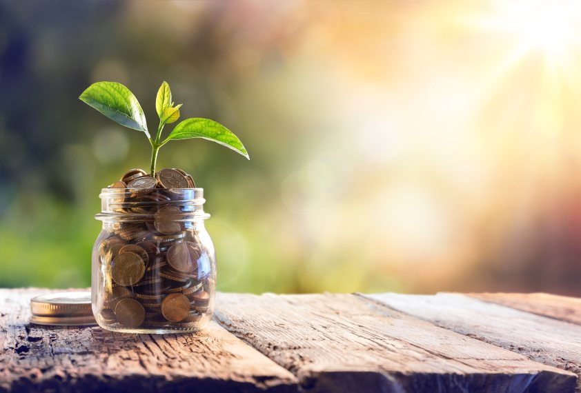 Investment And Saving Concept