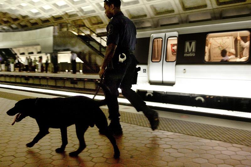 Metro Transit Police Special Response Team member patrols the Metro Center station with Sabre, an explosives detection dog