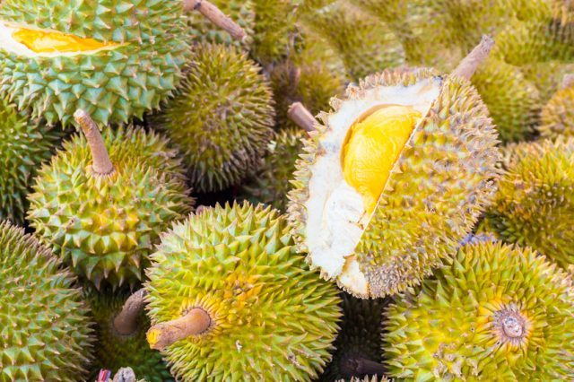 Pile of fresh durian fruits.