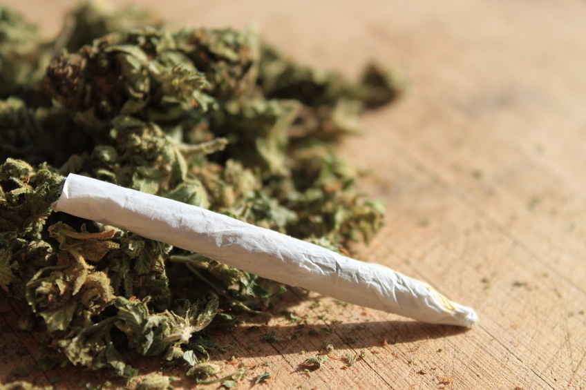 cannibis joint and herb, marijuana