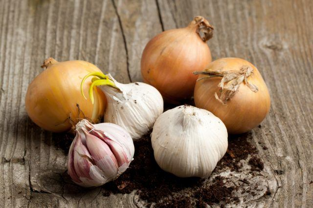 three onions and garlics