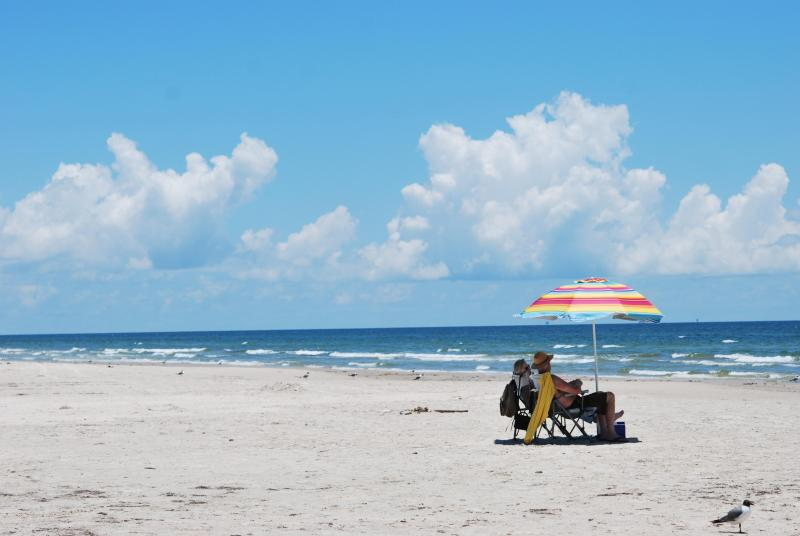 beach at padre island national seashore, texas