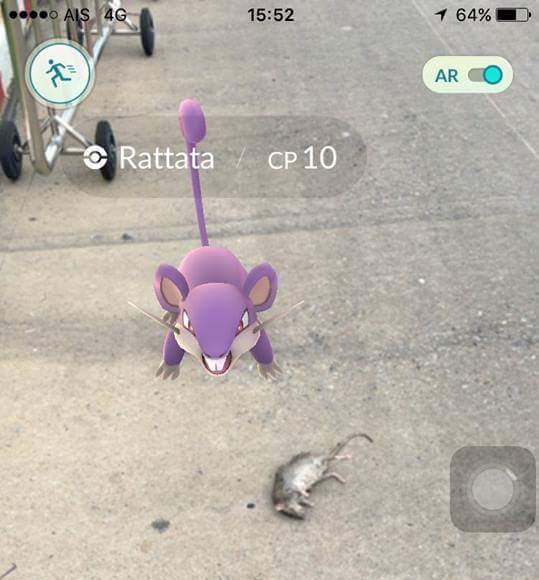 A Rattata Pokemon stands near a dead rat.
