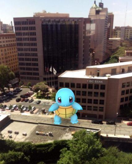 Squirtle looking big in Pokemon Go.