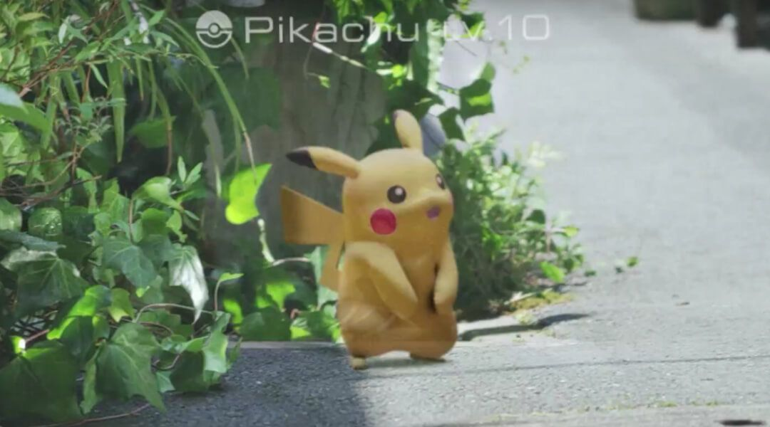 Pikachu in real life.