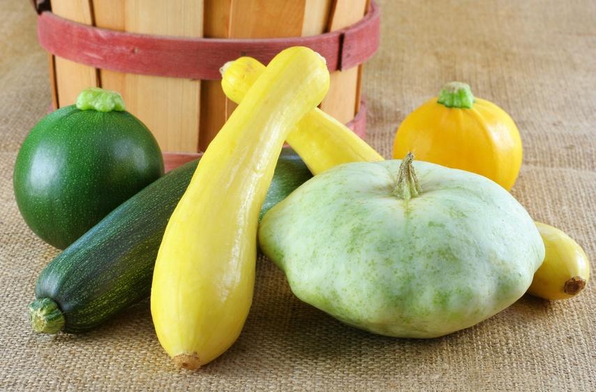green and yellow zucchini, globe, and patty pan squash