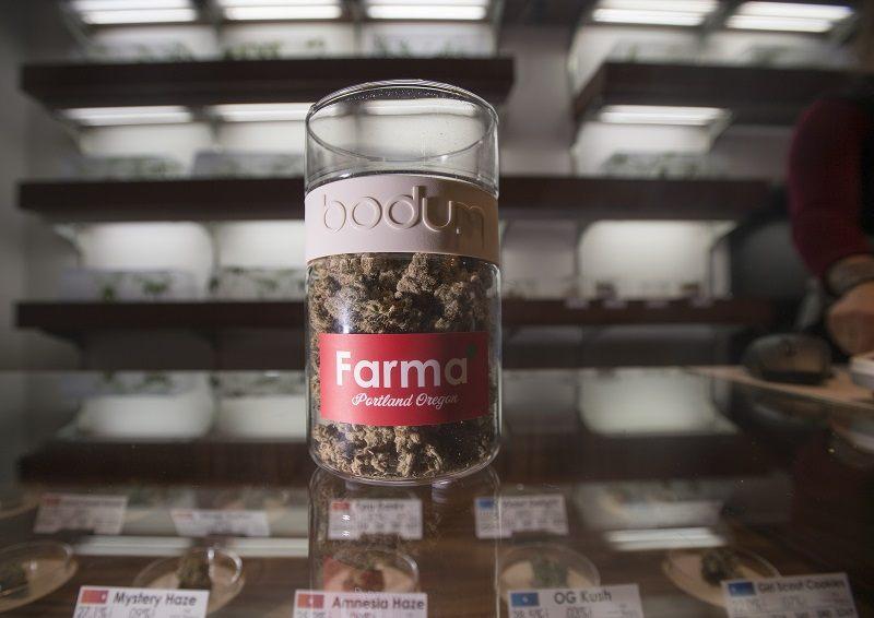 "Nugs of ""Animal Cookie"" are seen on a counter at Farma, a marijuana dispensary, in Portland, Oregon"