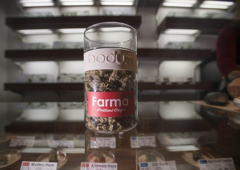 "Nugs of ""Animal Cookie"" are seen on a counter at Farma, a marijuana dispensary, in Portland, Oregon"