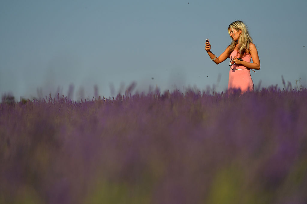 Woman takes a selfie photograph in a field of lavender
