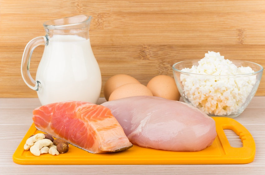 Protein source products including meat, milk, and eggs