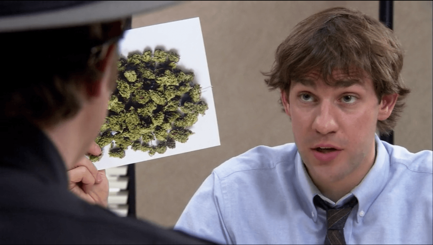 "Jim from ""The Office"" holding up picture of marijuana"