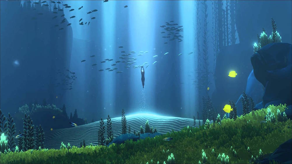 Light beams into the ocean, revealing schools of fish.