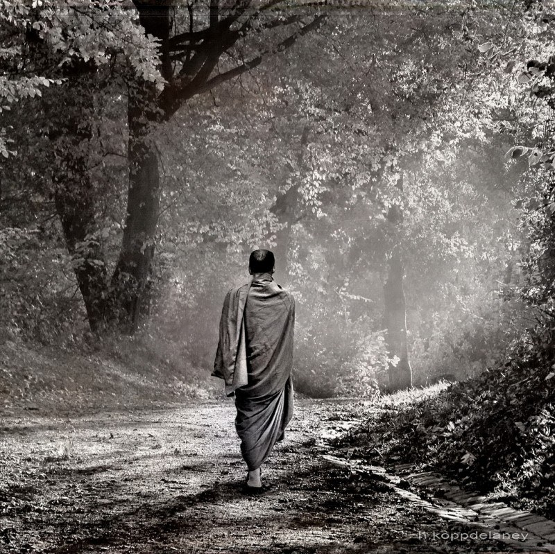 A monk walking