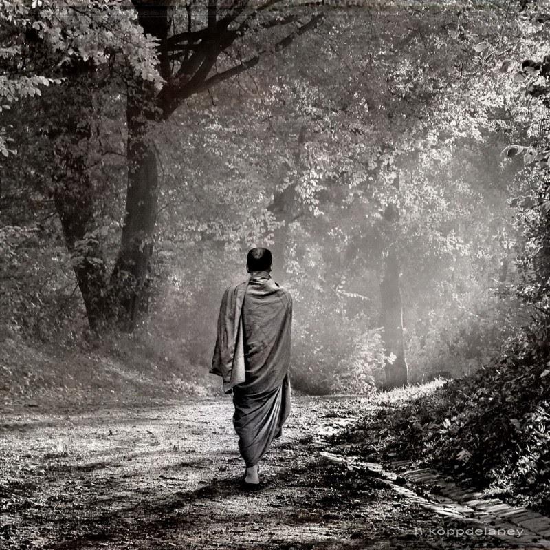 A monk walking