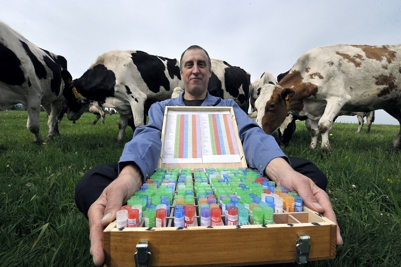 French milk producer Bruno Gourdon, next to his cows, presents a box of homeopathic remedies which are backed up with little more than junk science