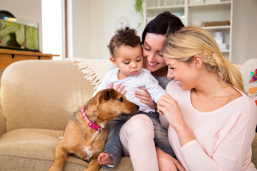 Same sex female couple sitting with their son and dog