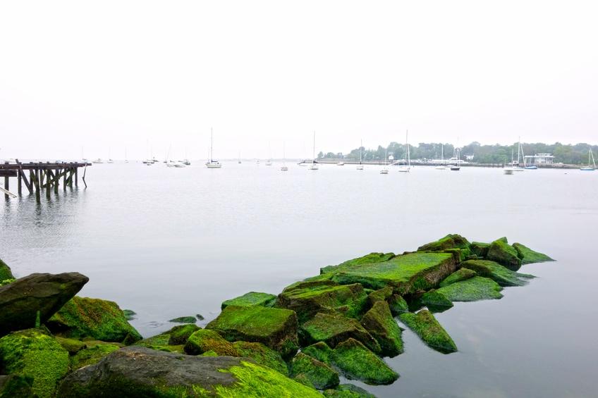 Seaside Park in Bridgeport, Connecticut