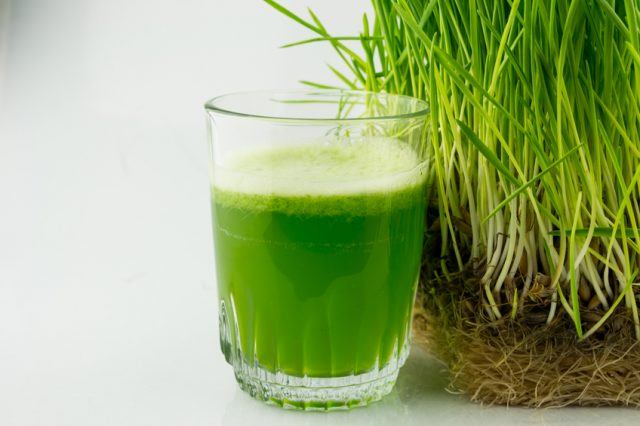 Green Organic Wheat Grass Juice