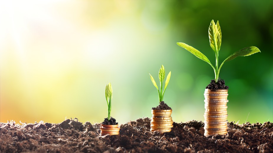 Money and plants growing