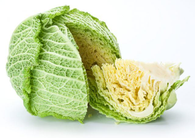 fresh cabbage on a white background