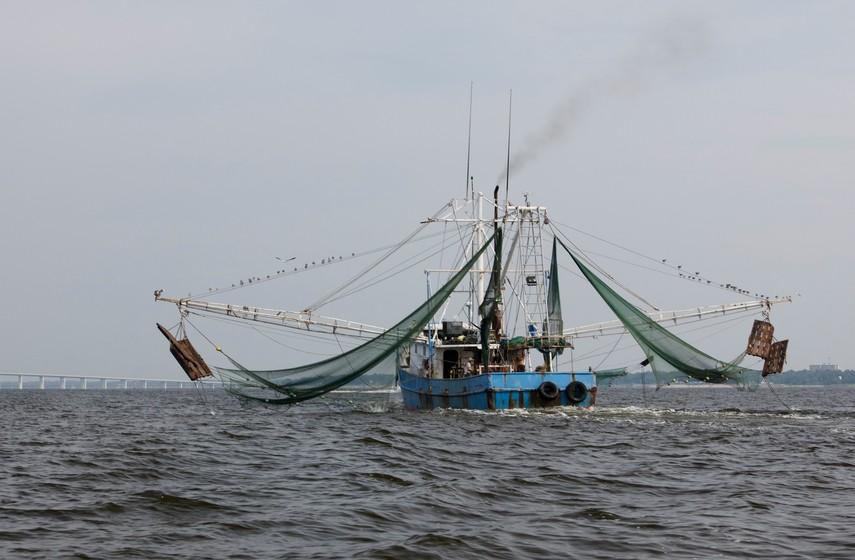 Shrimping boat headed back to port