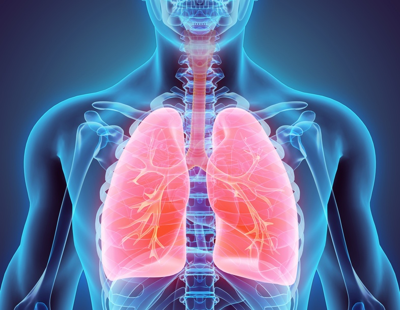 Your lungs will probably display signs if you have one of the types of lung cancer.
