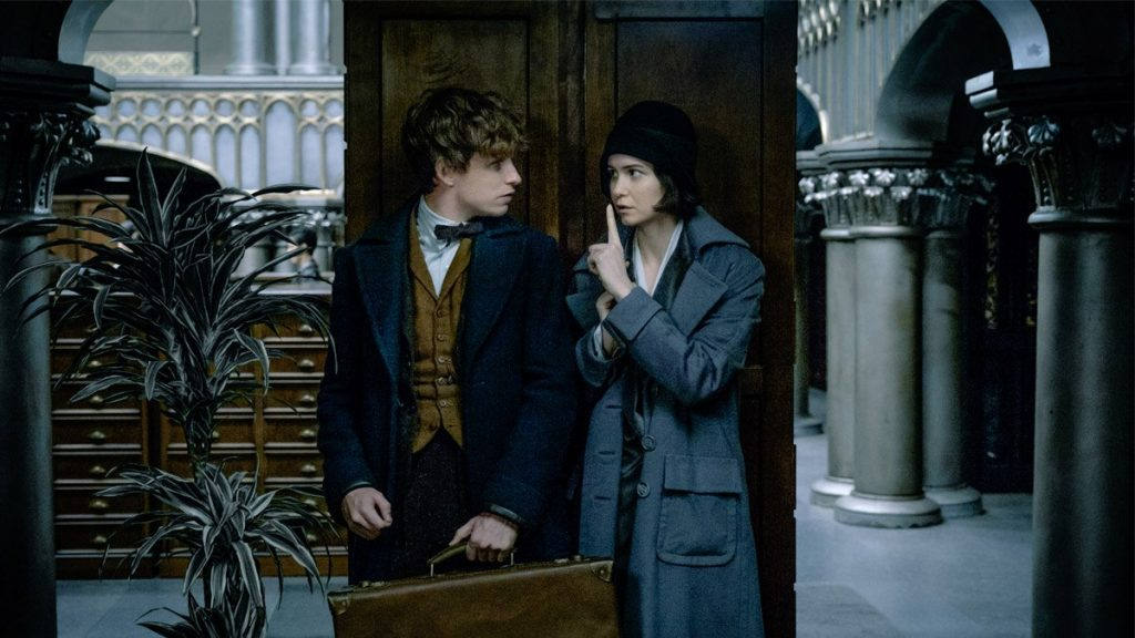 Fantastic Beasts and Where to Find Them - Eddie Redmayne