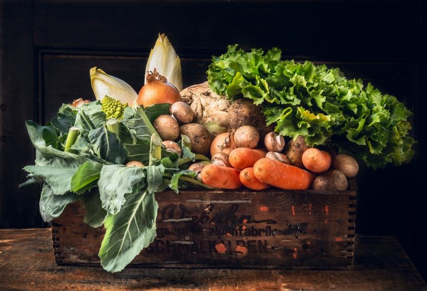 various of fresh vegetables