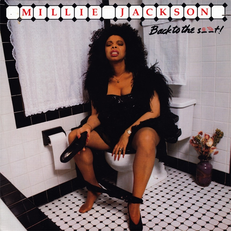 Image result for record album cover sitting on toilet