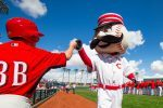 5 Things Baseball Fans Can Do in the MLB Offseason