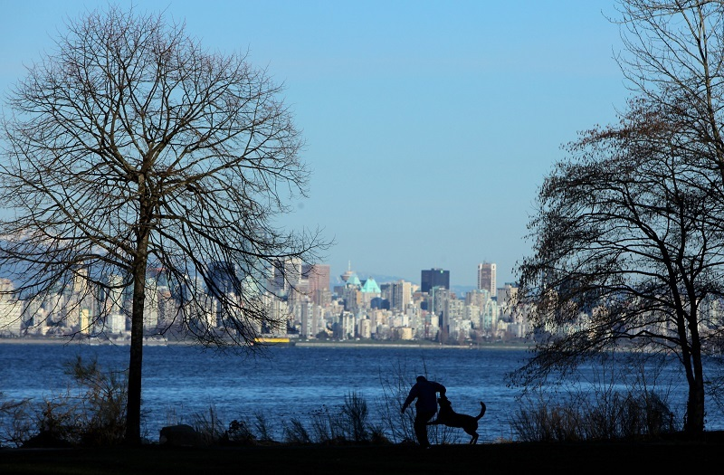 A dog and his owner frolic at Locarno Beach Park with the Vancouver city skyline as a back drop