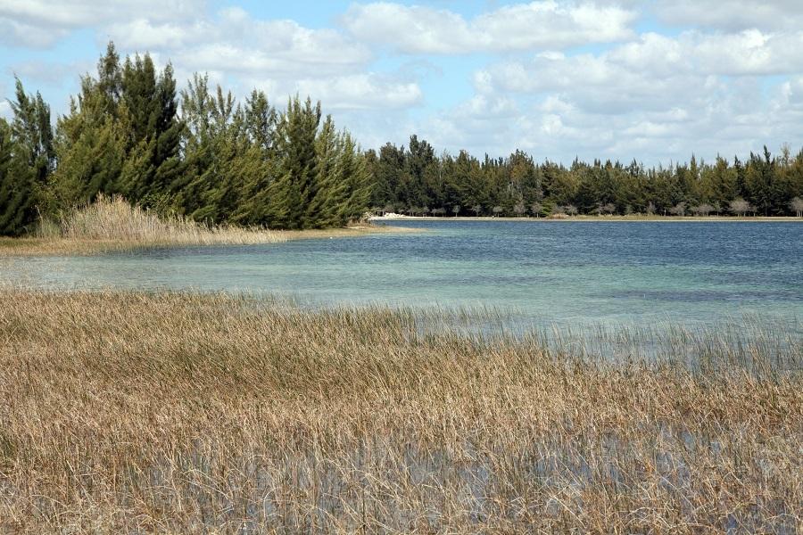 Amelia Park, Hialeah, Florida