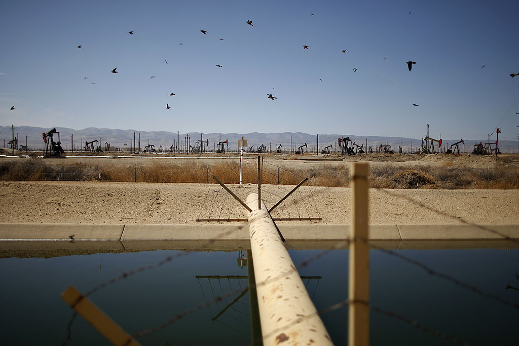 Swallows fly past a high pressure gas line