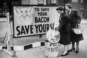 The Price of Bacon the Year You Were Born