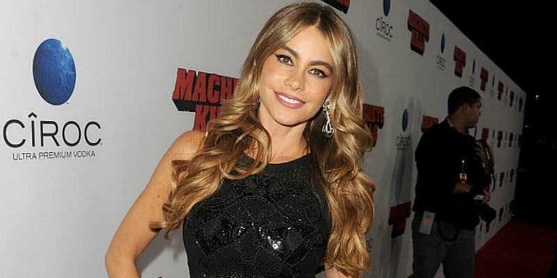 Sofia Vergara poses on the red carpet.