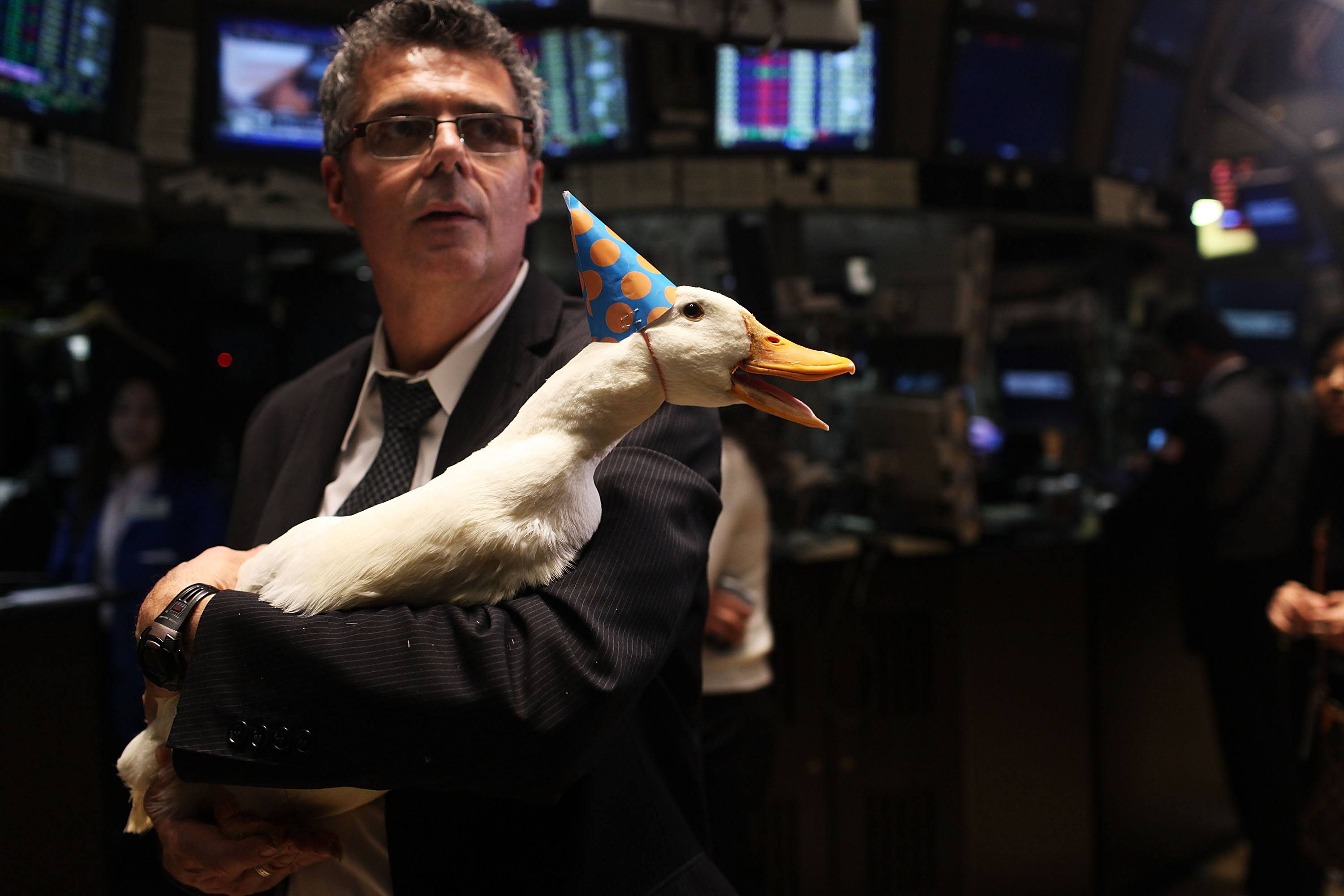Man and duck celebrate good times