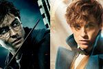 5 Ways 'Fantastic Beasts' Connects to the 'Harry Potter' Movies