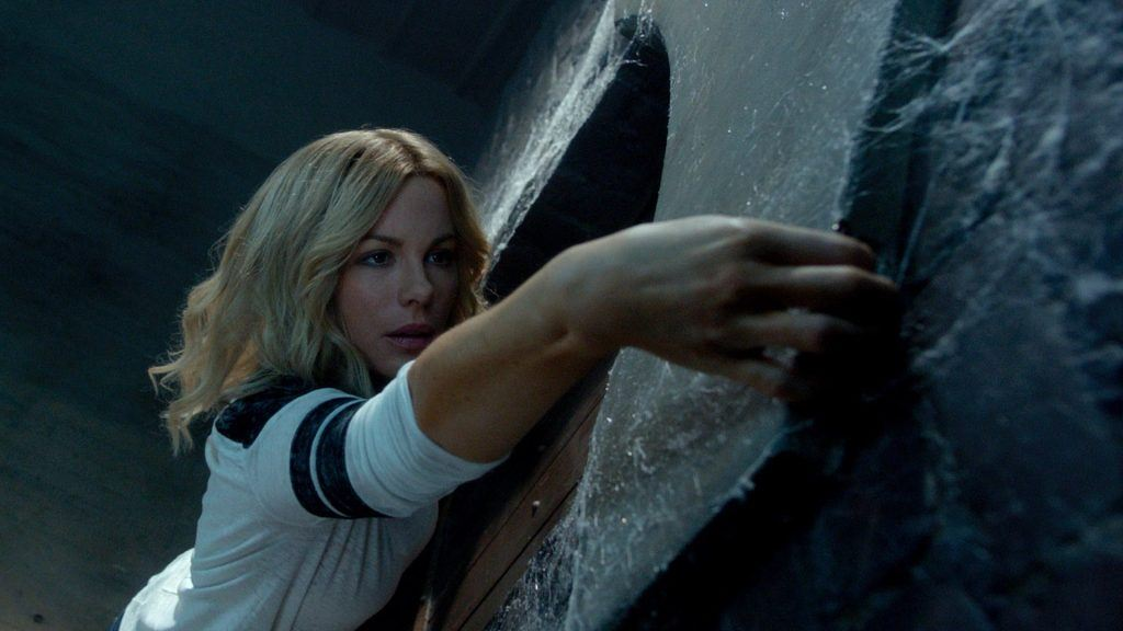 The Disappointments Room   Rogue