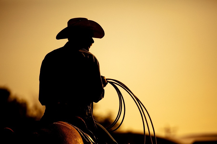 cowboy with lasso silhouette at small-town rodeo