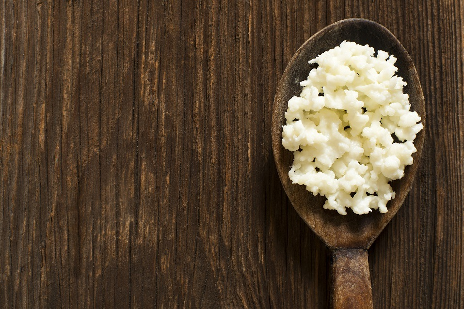 Kefir grains on a wooden spoon