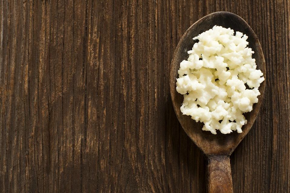 Kefir grains on a wooden spoon
