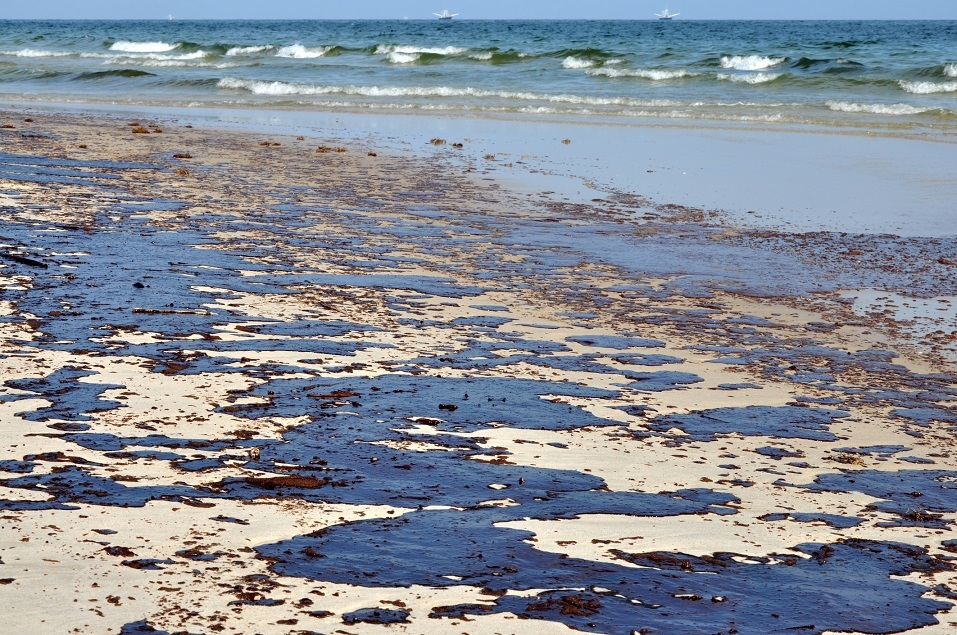 Oil washes up onto a beach
