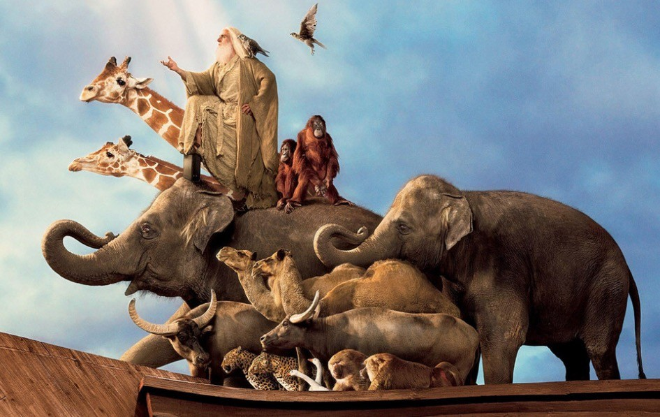 Steve Carrell as Noah, standing on top of a bunch of jungle animals on a boat