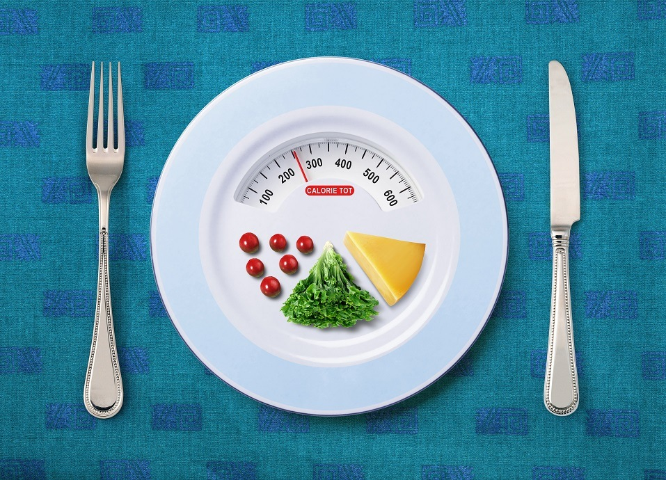 calorie count of food on a plate