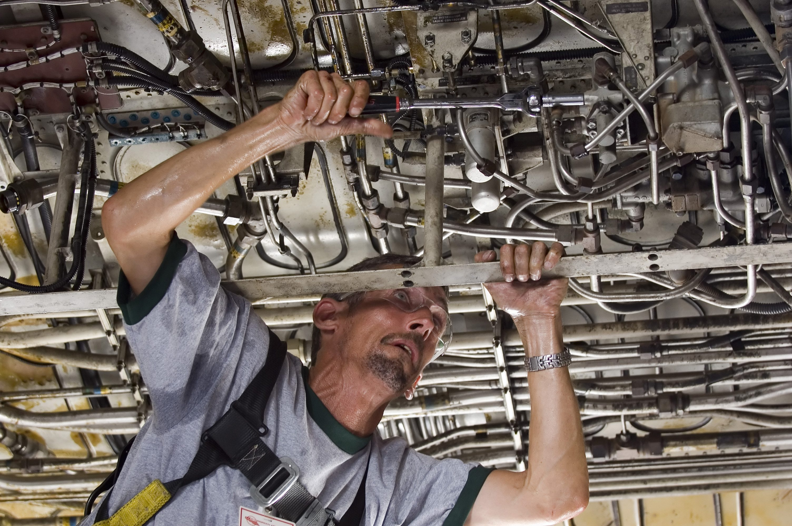 If you love tinkering with pipes and wires, the U.S. job market will have something for you