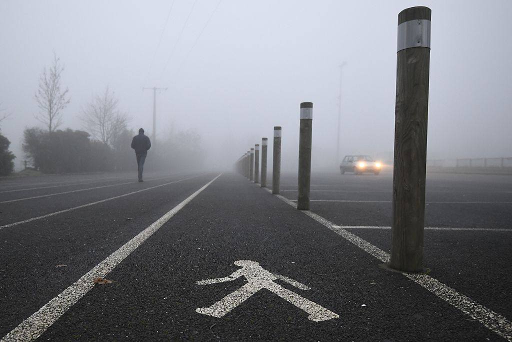 foggy walking path