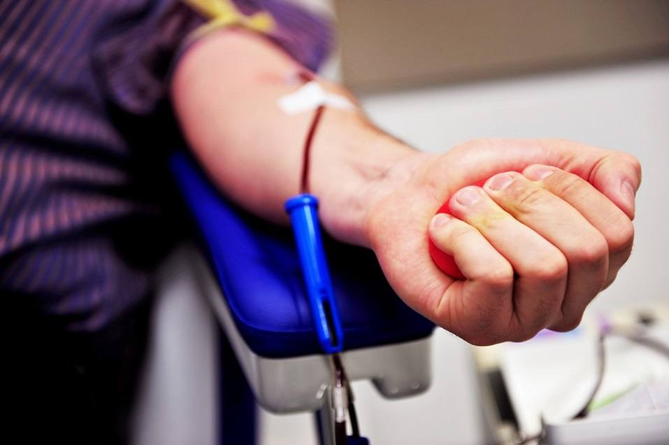 Hand of a blood donor squeezing a medical rubber ball