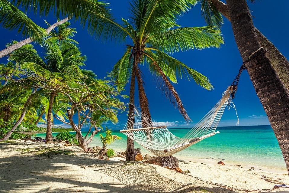 palm trees on tropical Fiji Islands