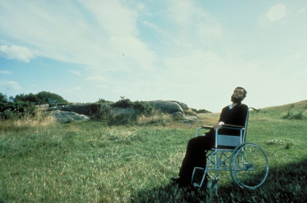Daniel Day-Lewis sits in a wheelchair in a green field