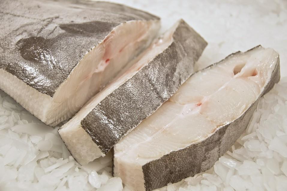 Halibut fish on ice